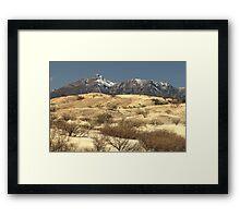 Desert Grasslands  Framed Print