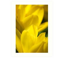 Yellow Flower Abstract Art Print