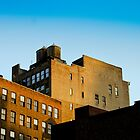 NYC Building Water Towers by jojocraig