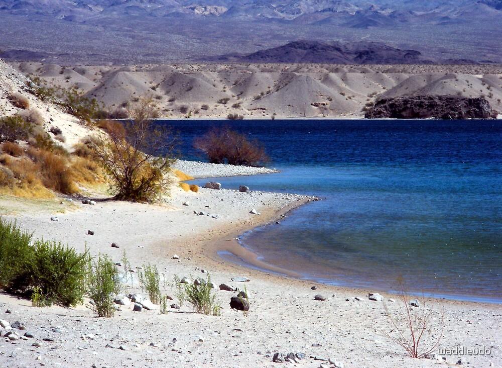 Cottonwood Cove, Lake Mojave, Nevada by waddleudo