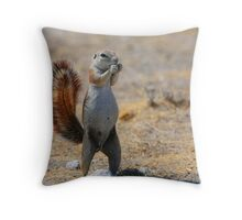 Cape Ground Squirrel Throw Pillow