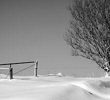 Winterscape by KBritt