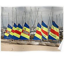 Sail boats in a row Poster