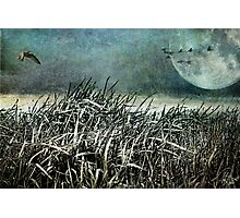 Dark Moon Rising Photographic Print