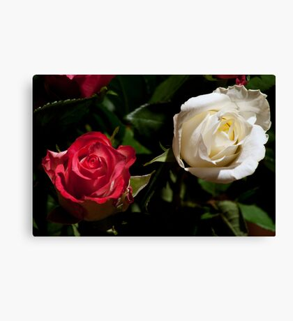 In Two Canvas Print