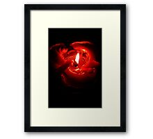 Rose of the Night Framed Print