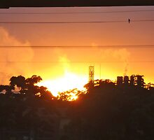 Bomaderry Sunrise by Stethaki