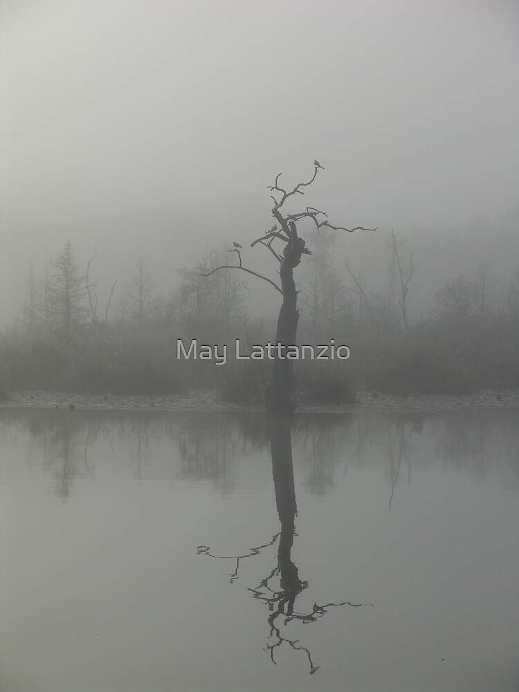 The Bird Tree by May Lattanzio