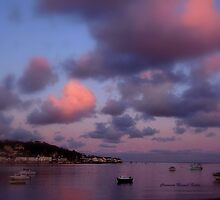 Dusk in Instow by Charmiene Maxwell-batten