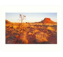 Spinifex, Sand, Sunset, Desert Oak and Stock Route. Art Print
