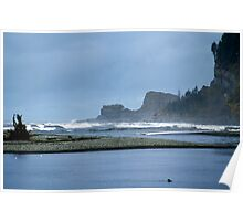 Taholah, Washington Beach Poster