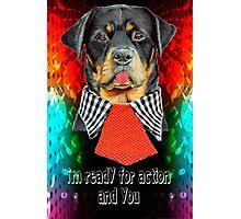 Rottweiler dog ready elegant  Photographic Print