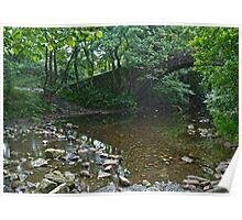 River Washburn Poster