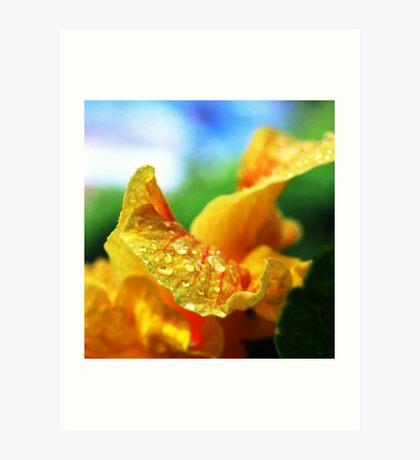 Hibiscus angle Art Print