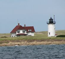 Lighthouse on Shore by tgarden