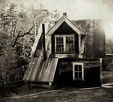 Vintage Watermill by tgarden