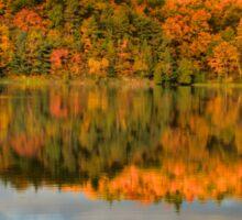 Pink Lake Reflections Sticker