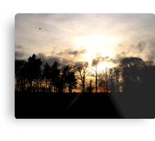 Norfolk Skyline Metal Print