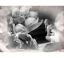 Claro de Luna Photographic Print