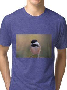 Dapper little bird Tri-blend T-Shirt