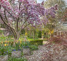 Soon It's Spring by Marilyn Cornwell