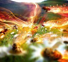 Cross Pollination by Glen Davidson