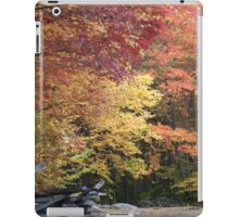 Autumn Fence iPad Case/Skin