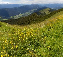 Carinthian Mountains by Walter Quirtmair