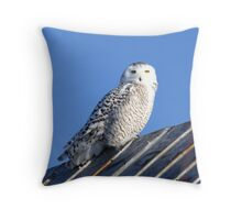 Before Departure Throw Pillow