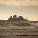 Long Beach Breaking Waves by CormacEby