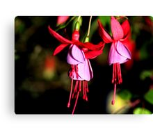 Red & Mauve Fuchsia Canvas Print