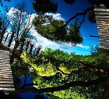 Blue ponds by elara