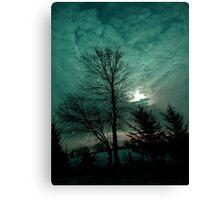Looking Up ! Canvas Print