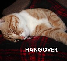 Hangover by DebbieCHayes