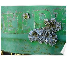 Lichens On The Deere Poster