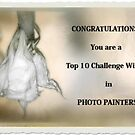 Photo Painters Top 10 Challenge Banner  by Carmen Holly
