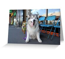 Gallery 1 Greeting Card