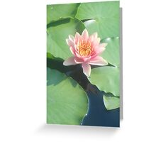 Gem of Nature Greeting Card