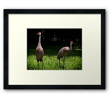 ricky and lucy Framed Print