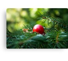 Pine Berry Canvas Print