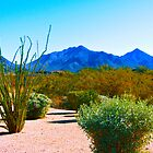 """Desertscape"" Scottsdale, Arizona by AlexandraZloto"