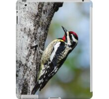 Woodpecker Bird Art iPad Case/Skin