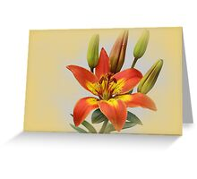 King;s Joy Lily Flower Greeting Card