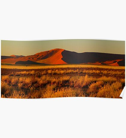 red dunes at sunrise Poster