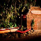 Aloha | Hawaii 2012  by RedDash