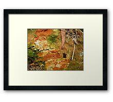 Earthy Ground Framed Print