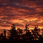 Fire in the Sky by sketchpoet