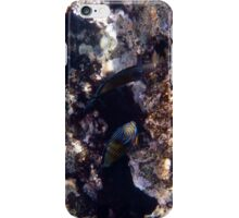 The Reef iPhone Case/Skin