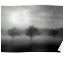 Shrouded in Fog Poster