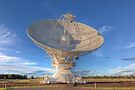 Australia Telescope Compact Array  Culgoora  New South Wales by William Bullimore